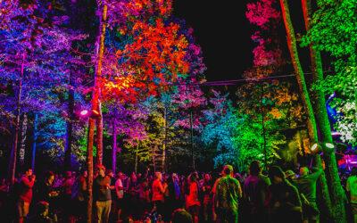 Lockn Site Lighting & Garcia's Forest