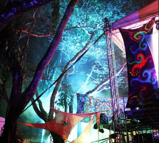 Jungle Jam 2014