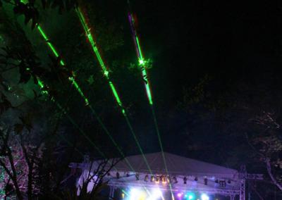 04-dumpsta-laserLeaves