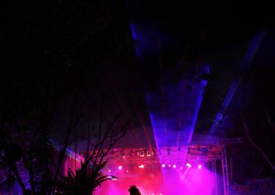 04-laserCheers