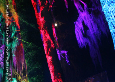 Aura Music Festival 2014: Art Installation and Lighting