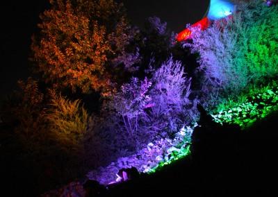 SJP: Decor Lighting, Garcia's @ Lockn 2014
