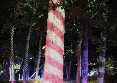 Hole1-Striped