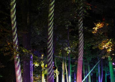 Hole1-ZebraForest