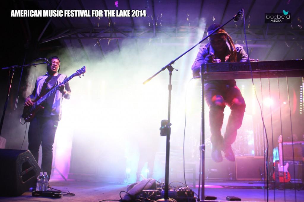 Festival for the Lake 2014