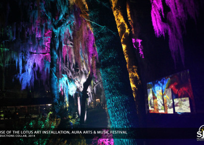 Aura Music Festival 2014: Art Installation