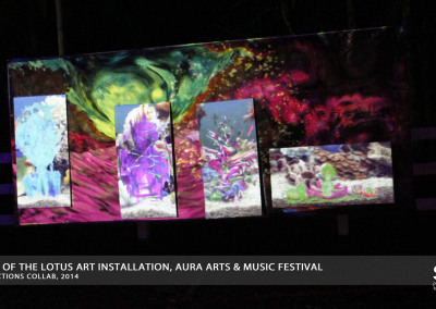 Aura Music Festival 2014: Projection Art Display