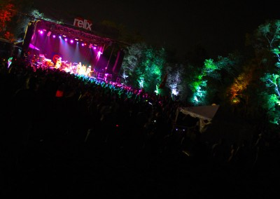 SJP: Treeline uplighting, Relix @ Lockn 2014