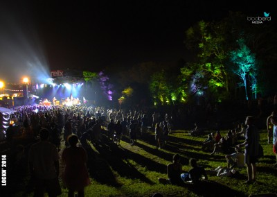 SJP: Festival tree uplighting Lockn 2014 Relix Stage treeline