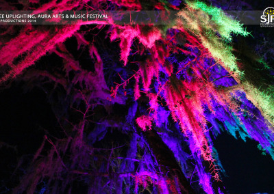 Aura Music Festival 2014: Hanging Moss