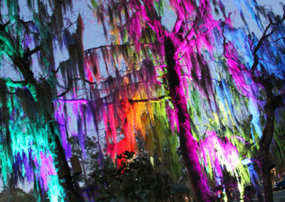Aura Music Festival 2014: Dripping Trees