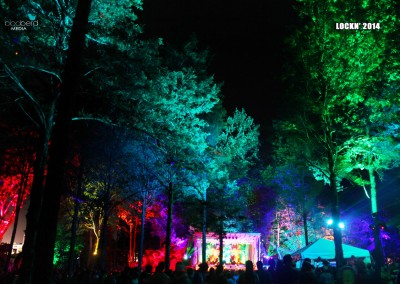 SJP: Tree Uplighting, Festival Decor and Stage Lighting Lockn 2014 Triangle Stage