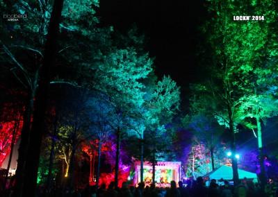 SJP: Tree Uplighting, Festival Decor and Stage Lighting Lockn 2014 Triangle Stage