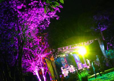 coloured-jungle2