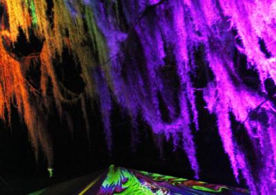 Aura Music Festival 2014: Boom Yoga Sponsorship Visibility