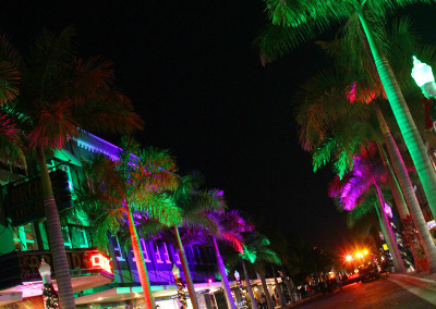 Fort Myers Tree Uplighting Pink & Green