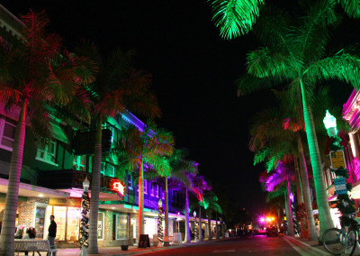 Fort Myers Tree Uplighting