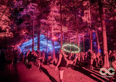 08-25-17_DPV_6527_Lockn_Fest_Midnight_North_by_Dave_Vann
