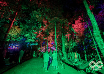 08-25-17_DPV_6553_Lockn_Fest_Midnight_North_by_Dave_Vann